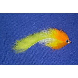 Raubfischzonker Tricolor