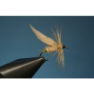 Grannom or Green Tail Fly