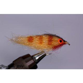 Fischchen Ginger - glänzend