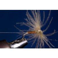 Rusty CDC Spinner / Spent ohne Widerhaken 12