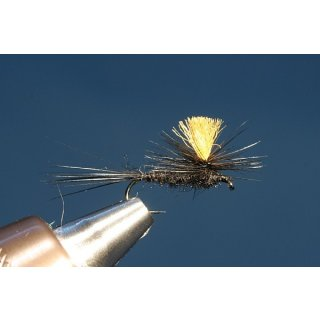 schwarze Parachute