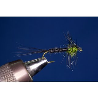 UV-Montana Nymphe grün