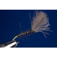 CDC Shuttle Emerger schwarz