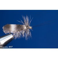 Set mit 12 Trockenfliegen - Köcherfliegen / Slowenische Sedge