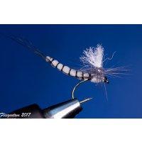 6 Stück Extended Body Maifliegen mit Parachute Hechel